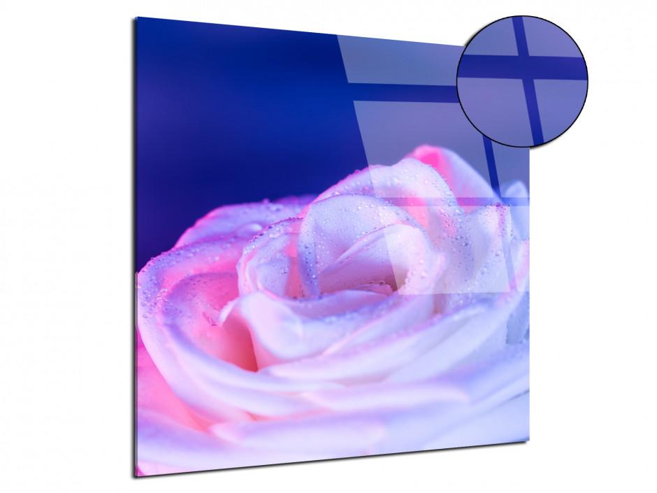 Tableau plexiglas deco Rose violette