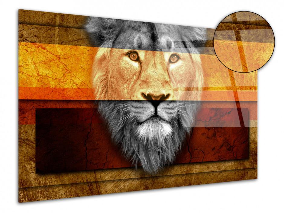 Tableau Plexiglas décoratif Ethnique tête de Lion