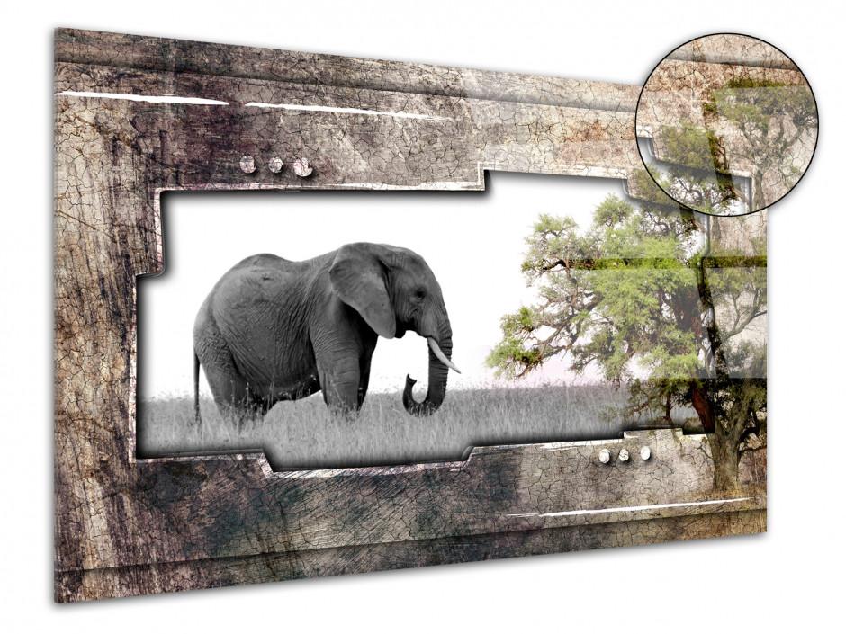 Tableau plexiglas deco Eléphant d'Afrique