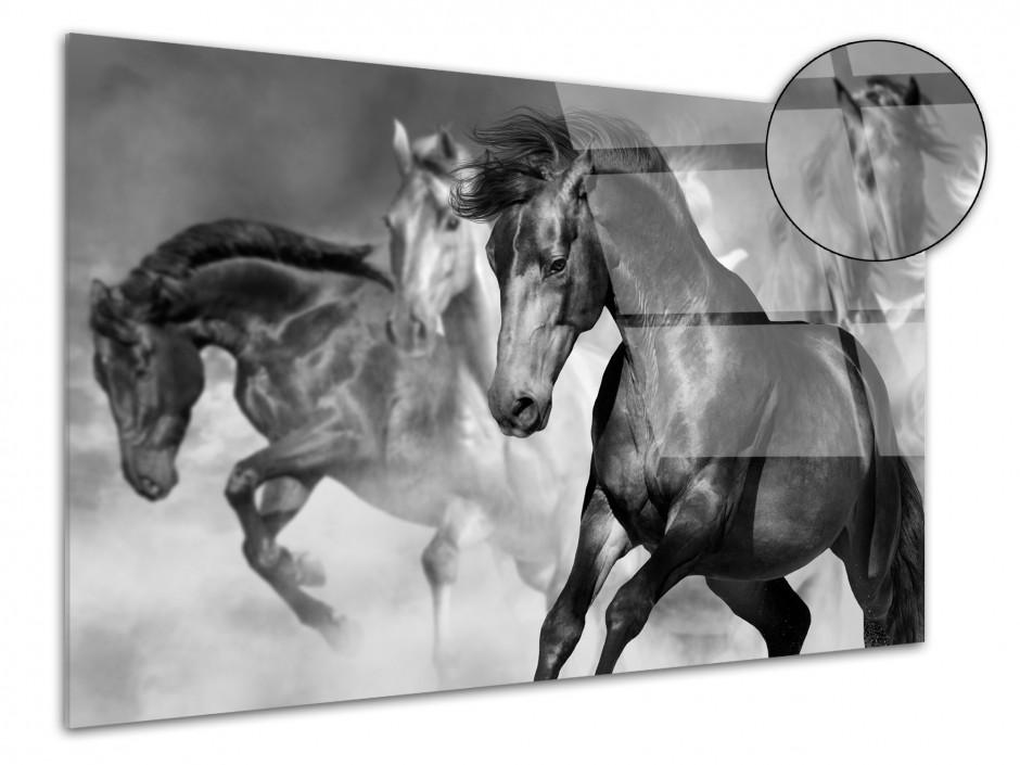 Tableau plexiglas course de chevaux