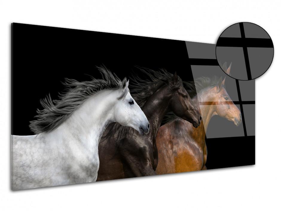 Tableau plexiglas decoratif portrait de cheveaux