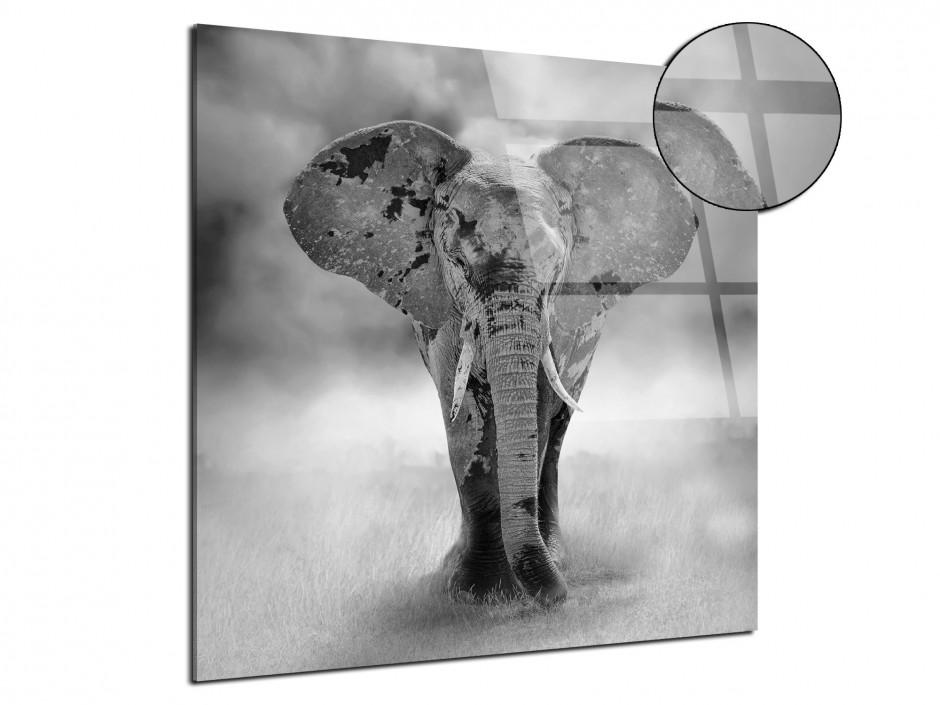 Tableau plexiglas décoration Petit Eléphant