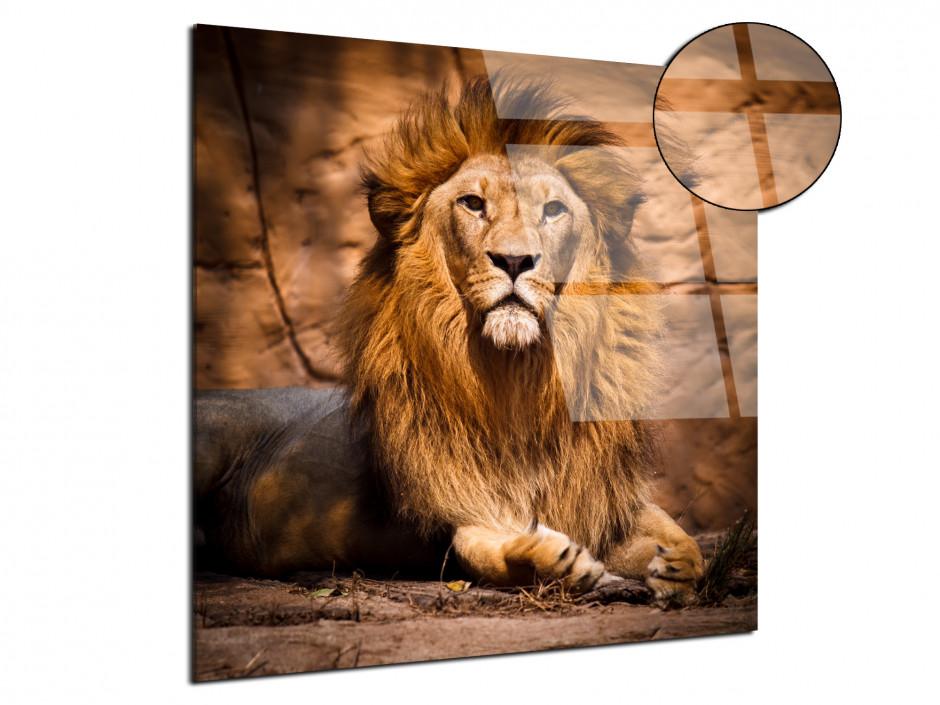 Tableau plexiglas le roi Lion
