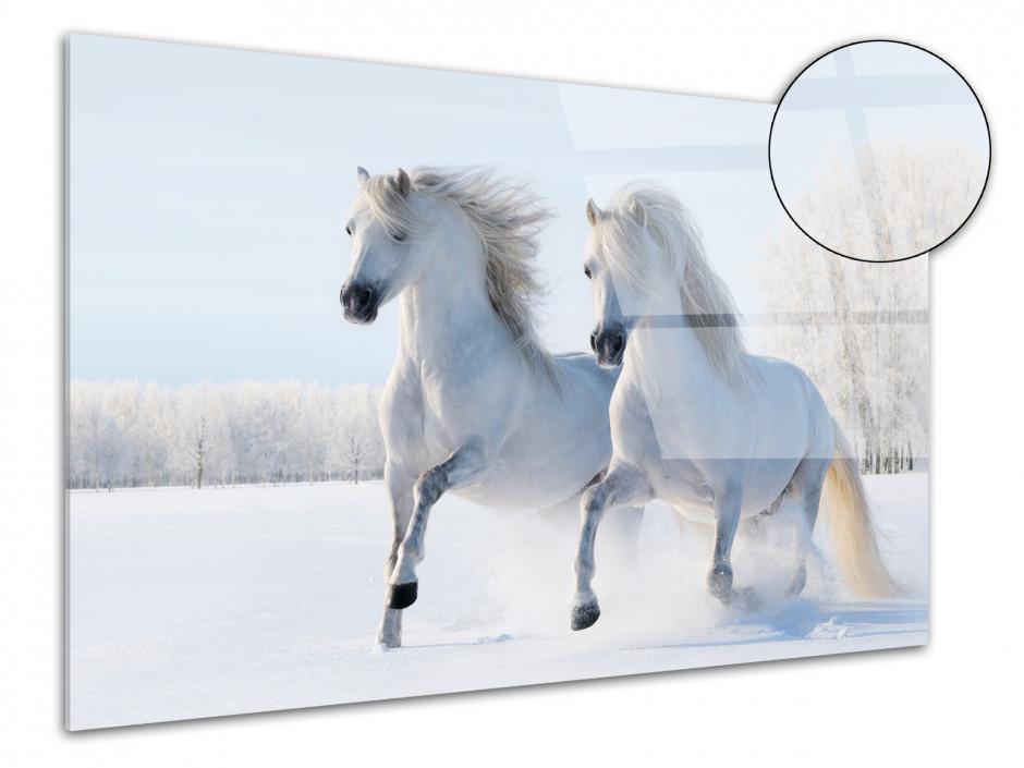 Tableau plexiglas Chevaux dans la neige