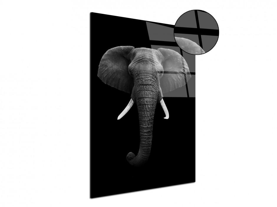 Tableau plexiglas décoratif animaux Elephant