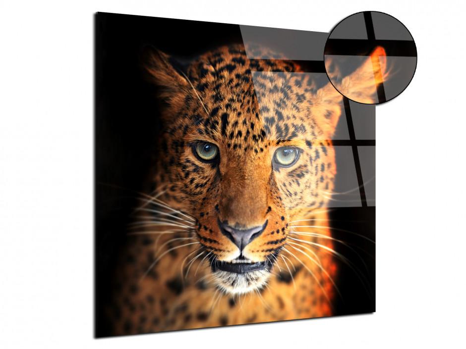 Tableau plexiglas portrait - La Panthére
