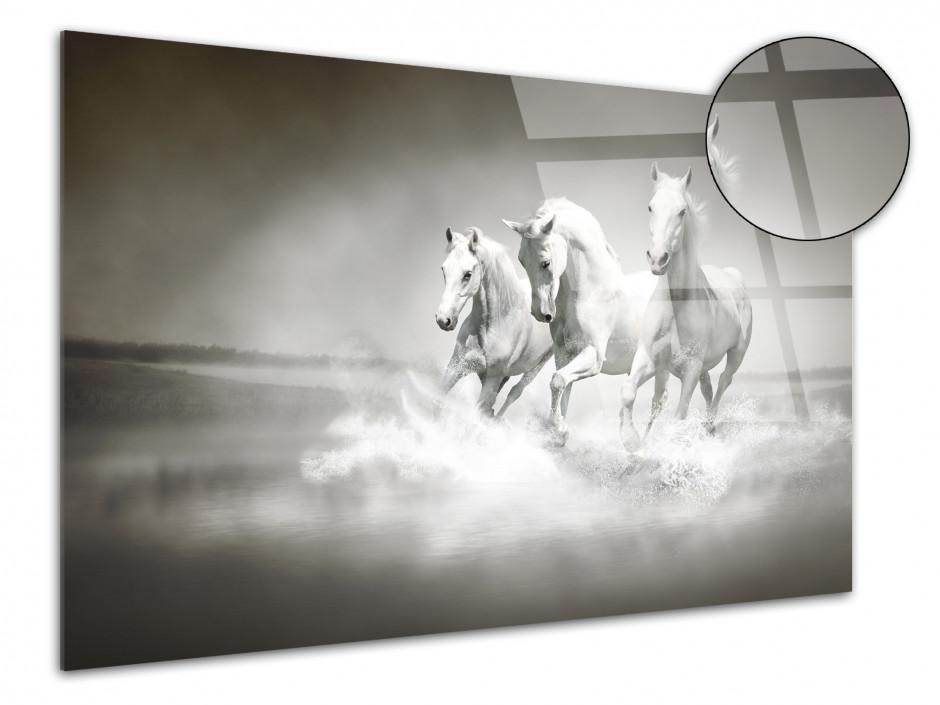Tableau plexiglas photo les 3 Chevaux