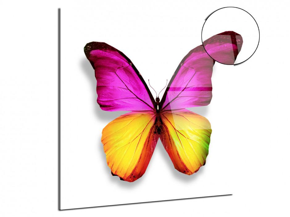 Cadre plexiglas deco moderne Papillon