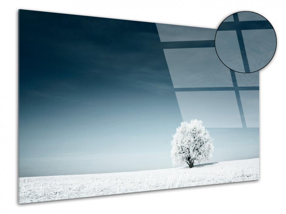 Tableau plexiglas photo paysage SOLITAIRE