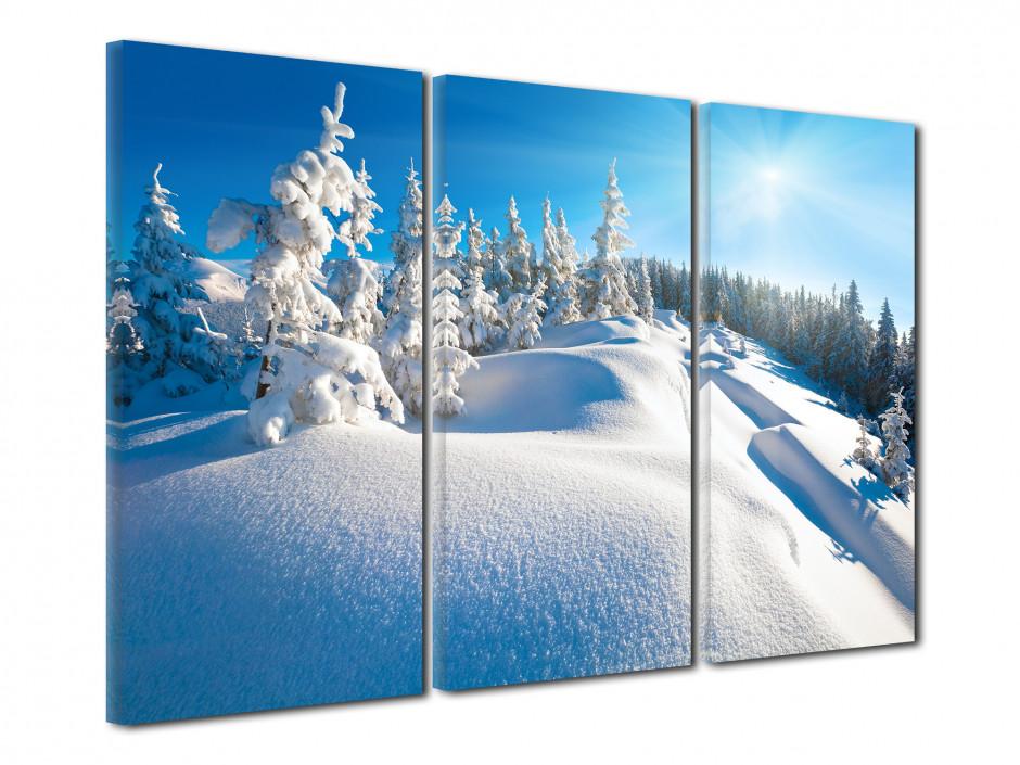 Tableau triptyque Paysage de montagne enneigée