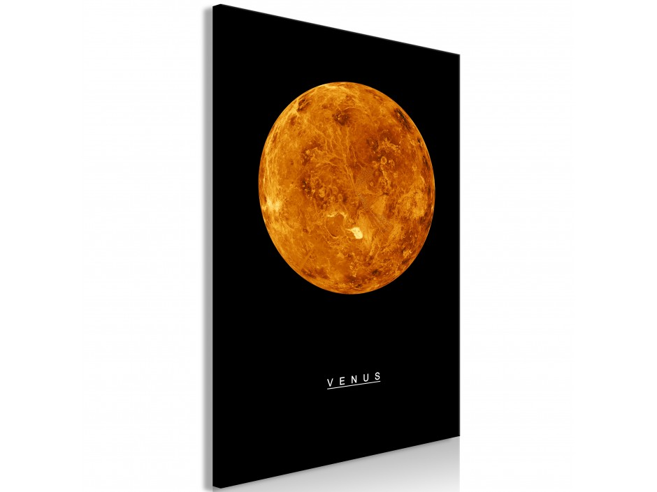 Tableau  Venus (1 Part) Vertical