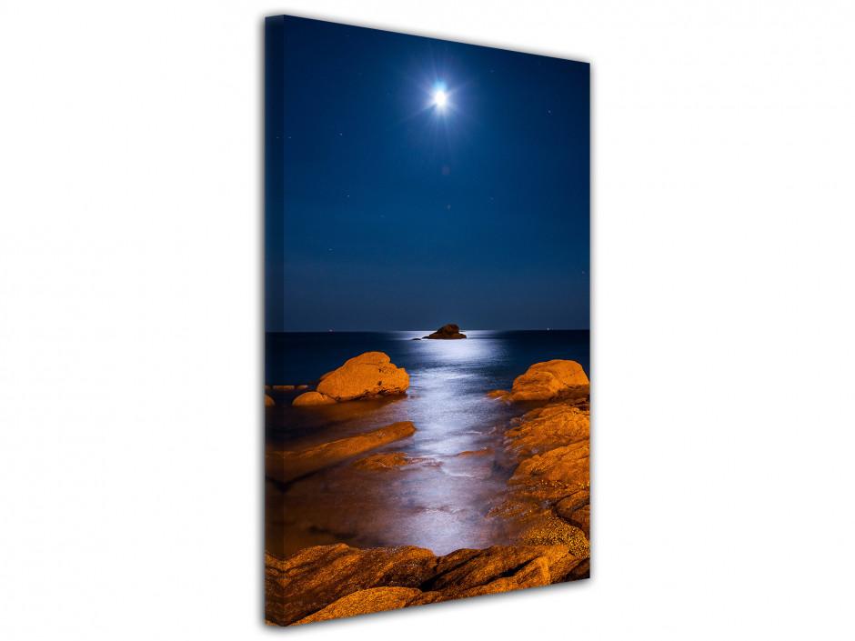 Tableau photo de paysage au clair de lune
