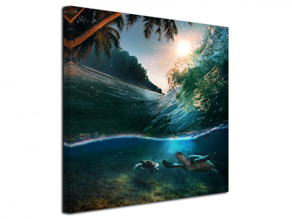 Tableau photo paysages sous-marins