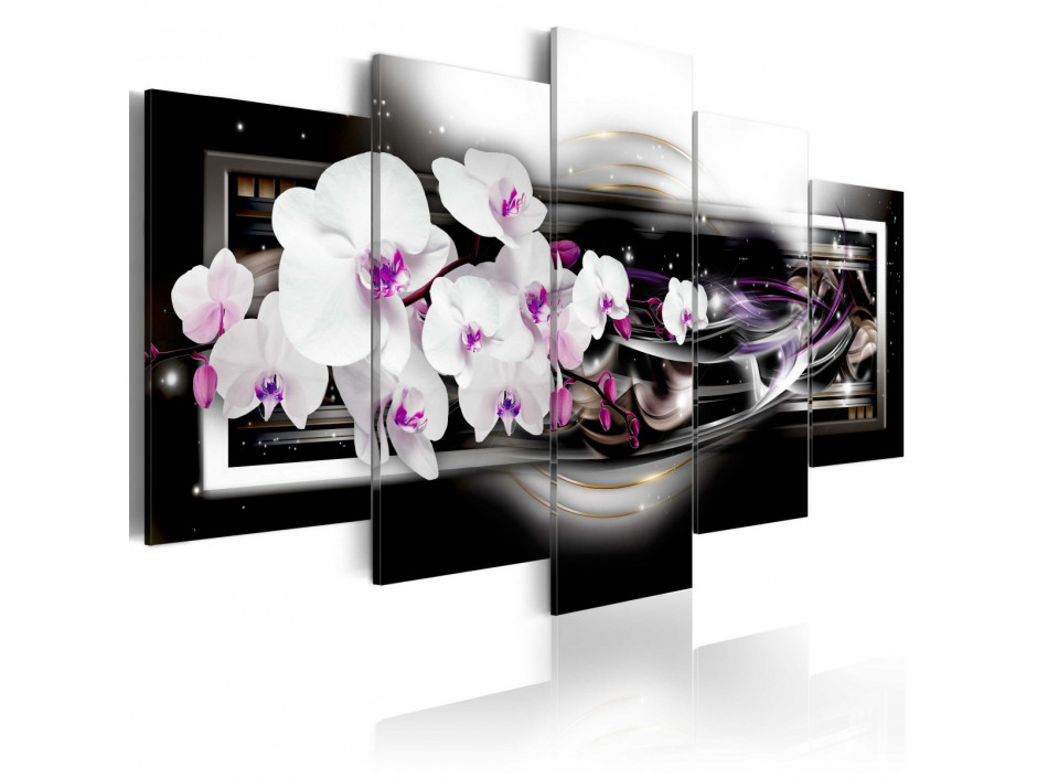 Tableau - Orchids on a black background