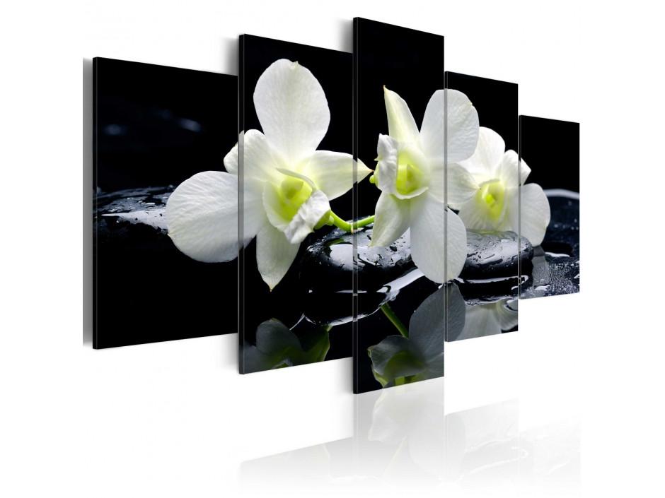 Tableau - Melancholic orchids