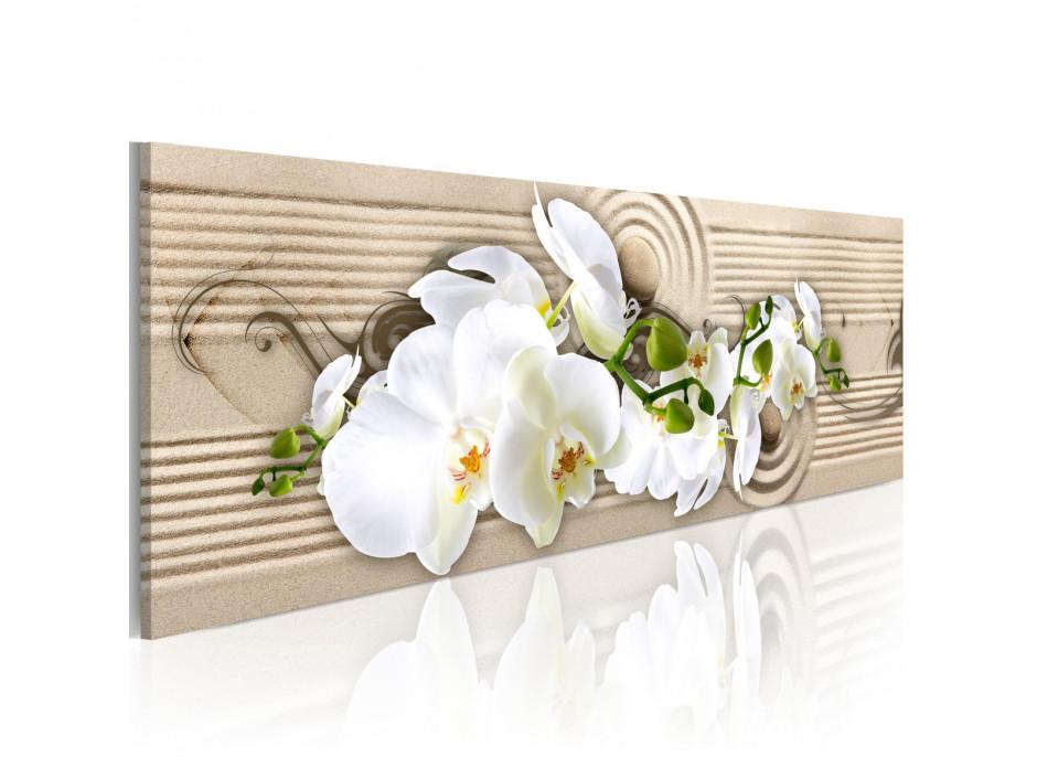Tableau - Desert Flower