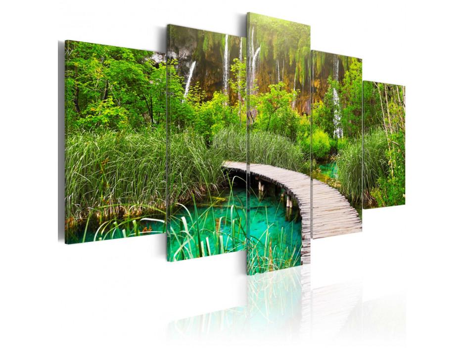 Tableau - Emerald Trail