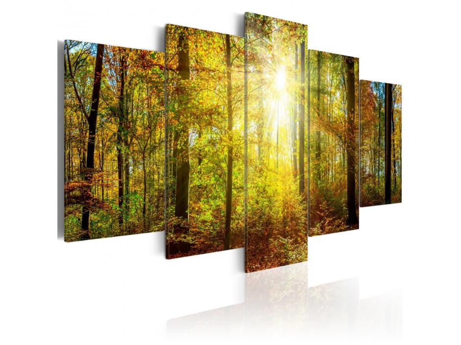 Tableau  Mystical Forest