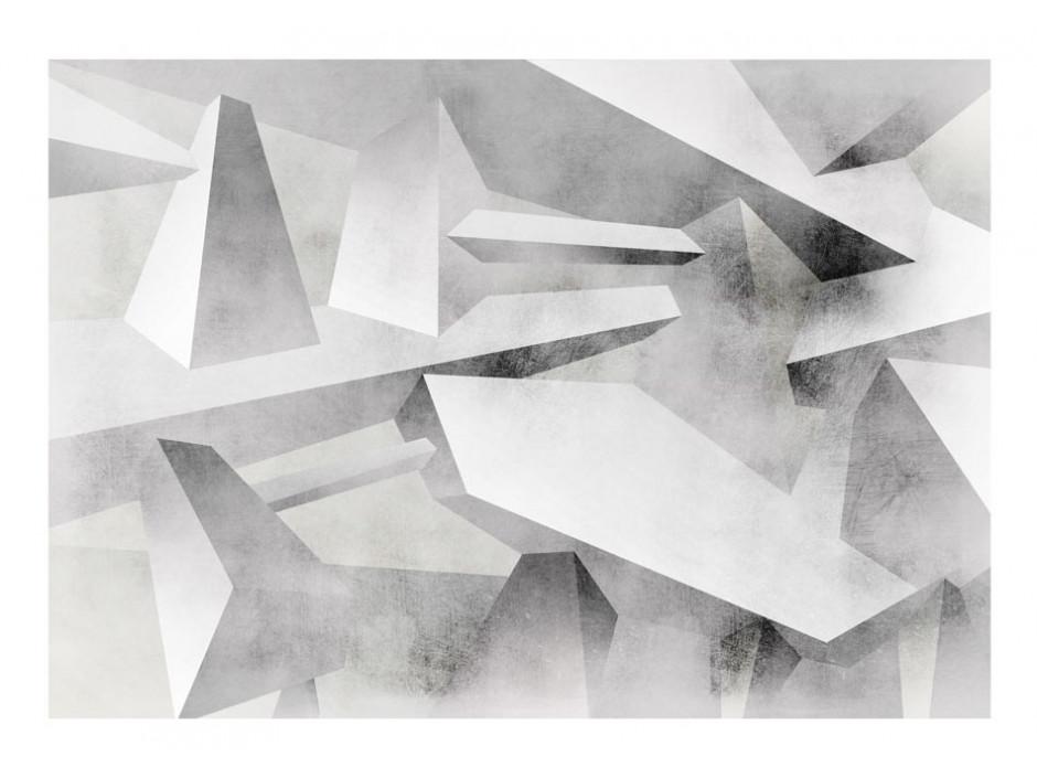 Papier peint  Frozen wings