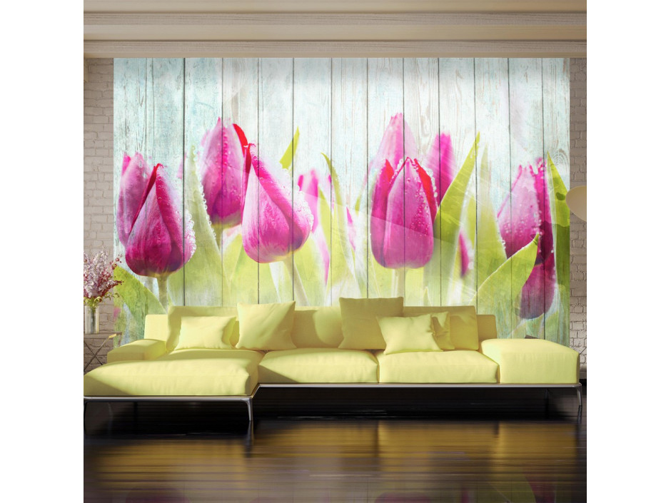 Papier peint  Tulips on white wood