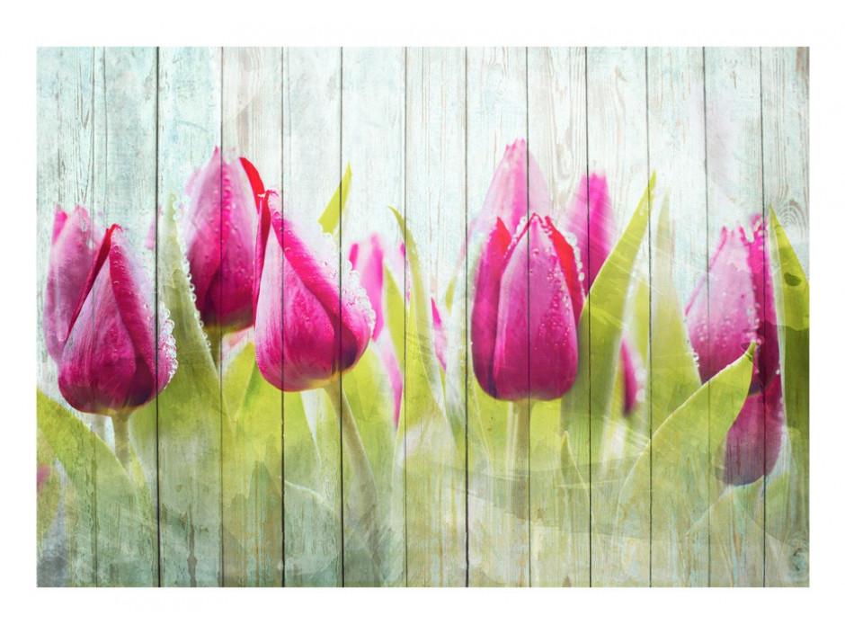 Papier peint  Tulips on white wood