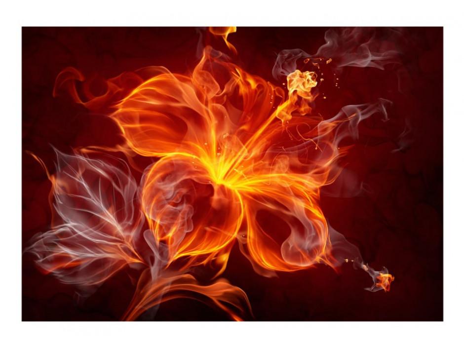 Papier peint  Fiery flower