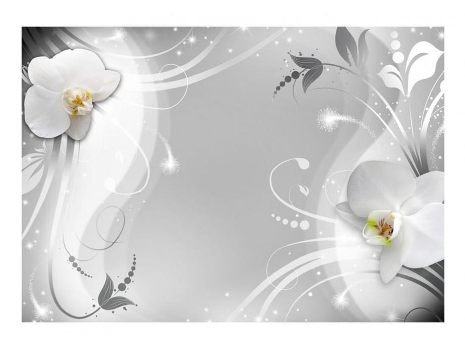 Papier peint  Charming orchid