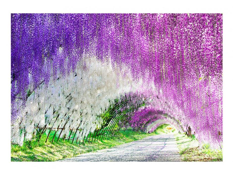Papier peint  Enchanted garden