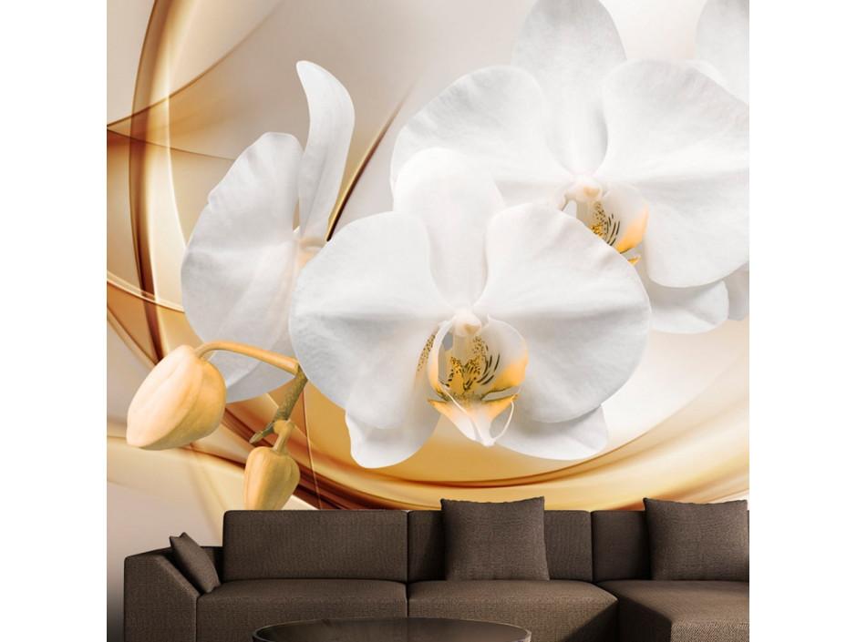 Papier peint  Orchid blossom
