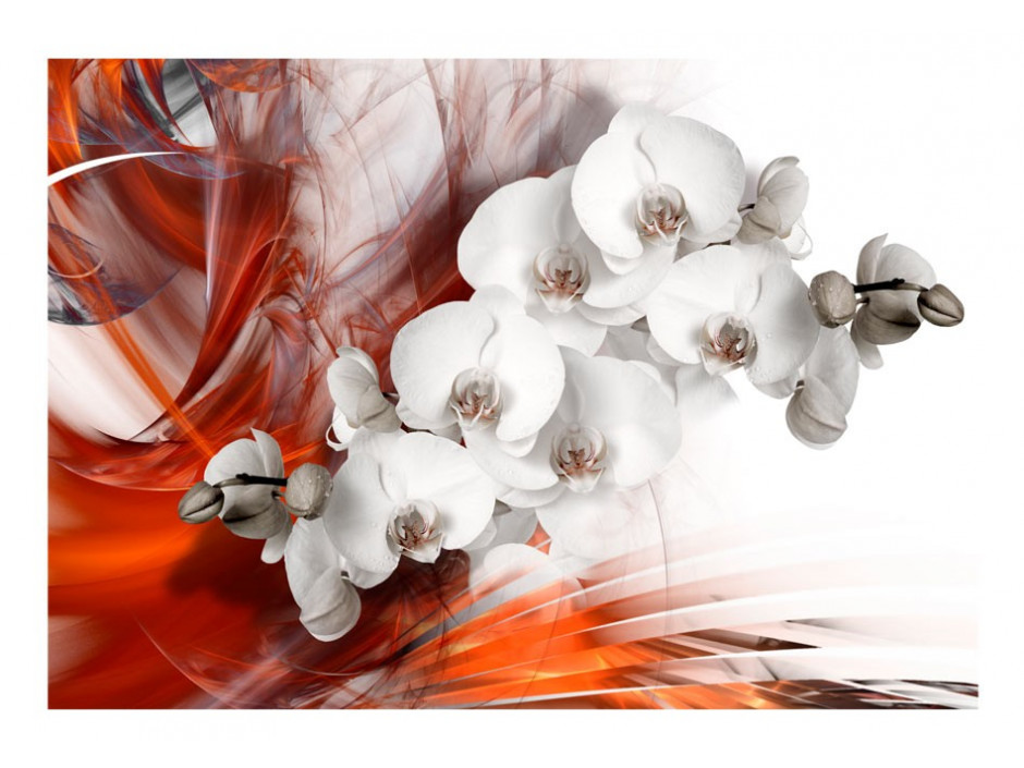 Papier peint  Orchid on fire II