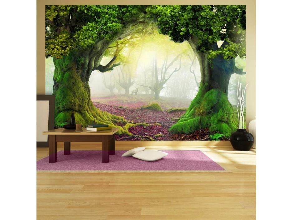 Papier peint  Enchanted forest