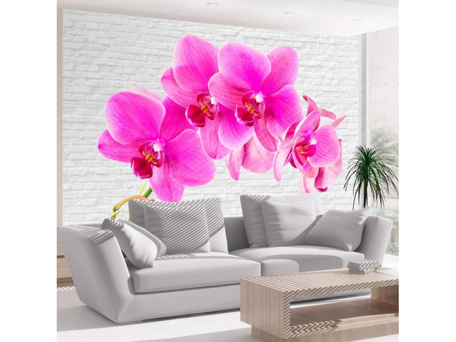 Papier peint - Pink excitation