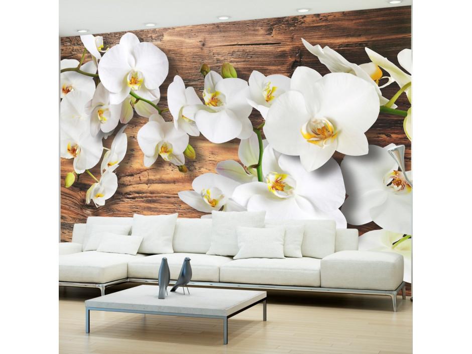 Papier peint - Forest Orchid
