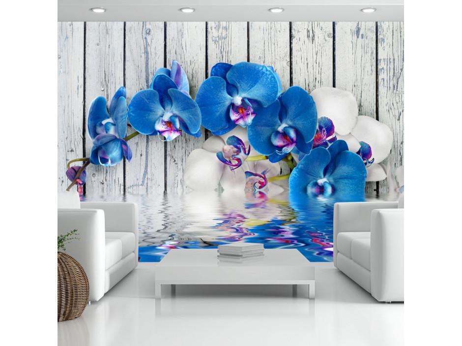 Papier peint - Cobaltic orchid