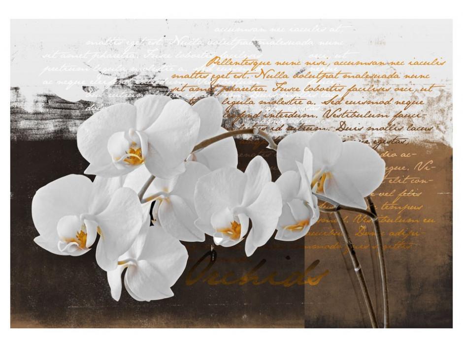 Papier peint  Sentimental thoughts