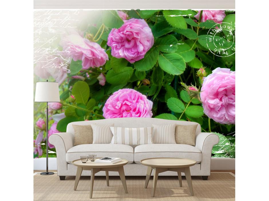 Papier peint - Summer garden