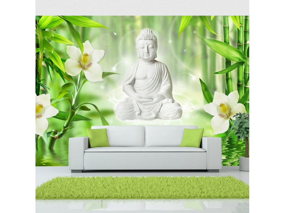 Papier peint  Buddha and nature
