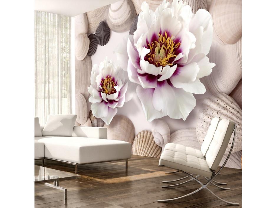 Papier peint  Flowers and Shells