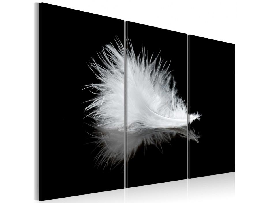 Tableau - Petite plume