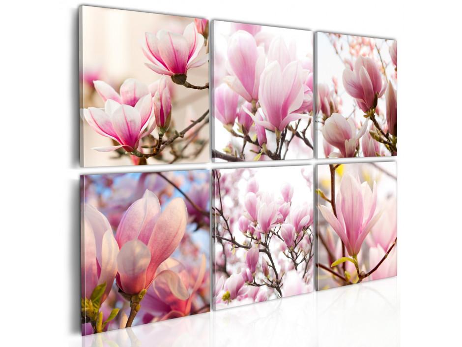 Tableau - Magnolias dans le Sud