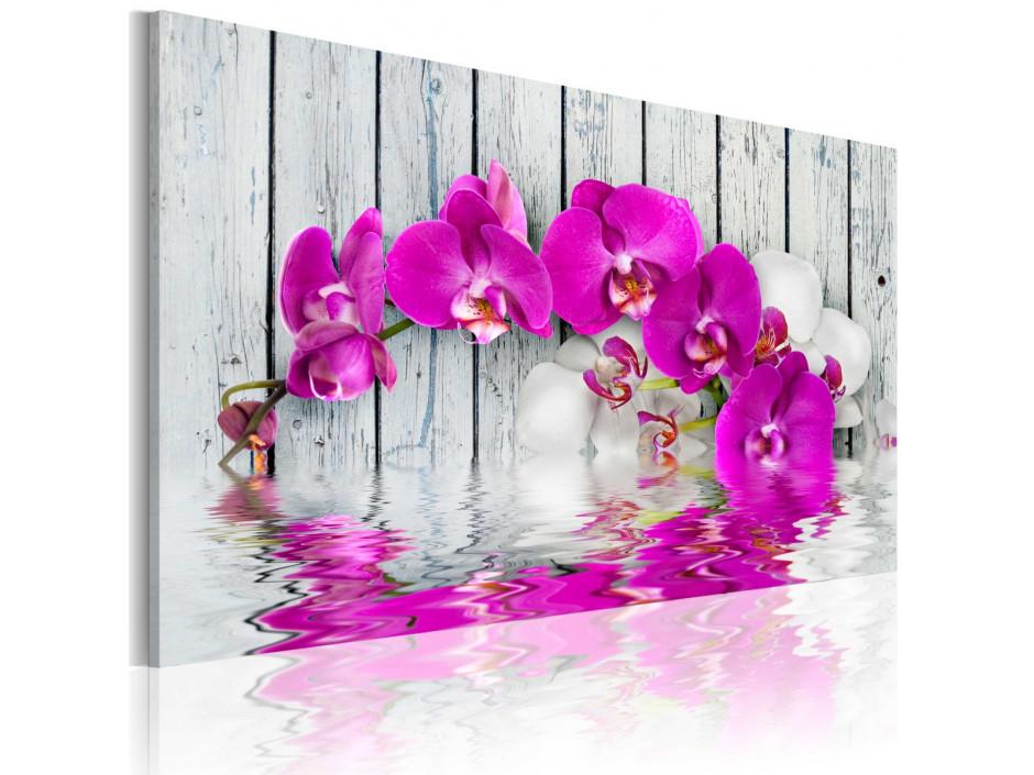 Tableau - harmonie: orchidée