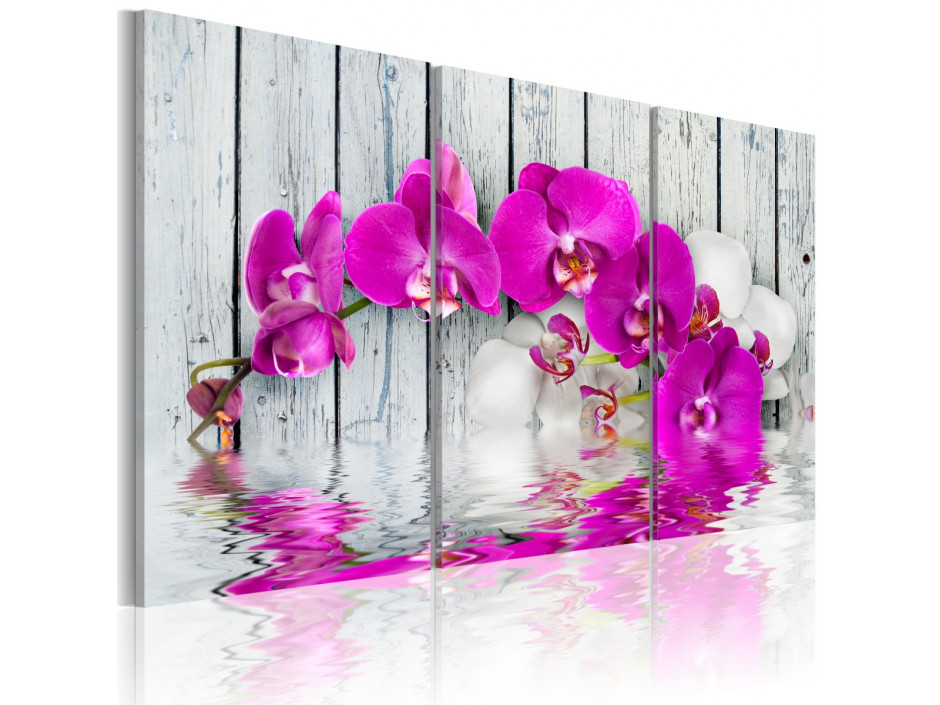 Tableau - harmony: orchid - Triptych