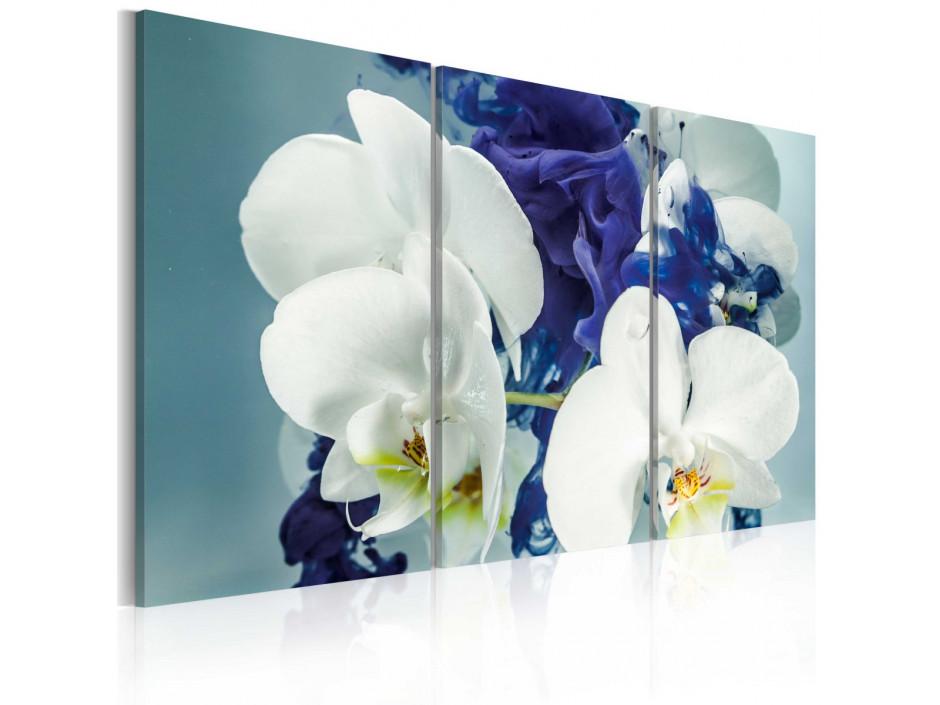 Tableau - Orchidées chimériques