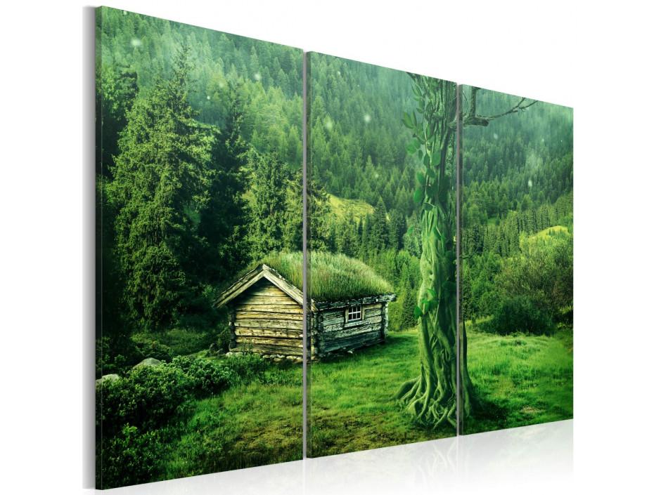 Tableau - écosystème forestier