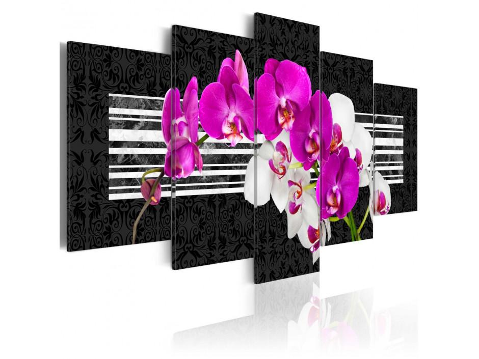 Tableau - Modest orchids