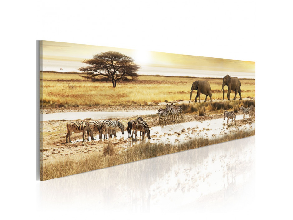 Tableau - Africa: at the waterhole