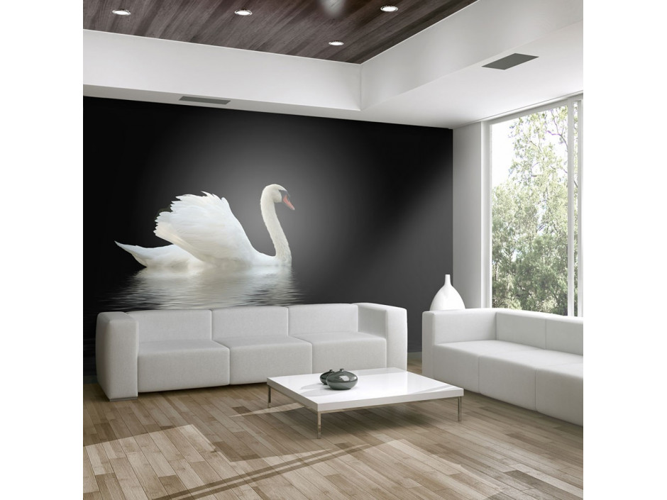Papier peint  cygne (noir et blanc)