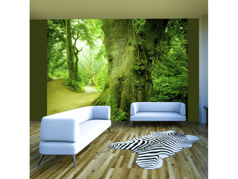Papier peint  Chemin forestier