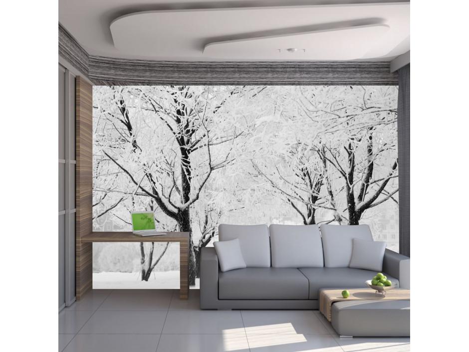 Papier peint - Arbres - paysage d'hiver
