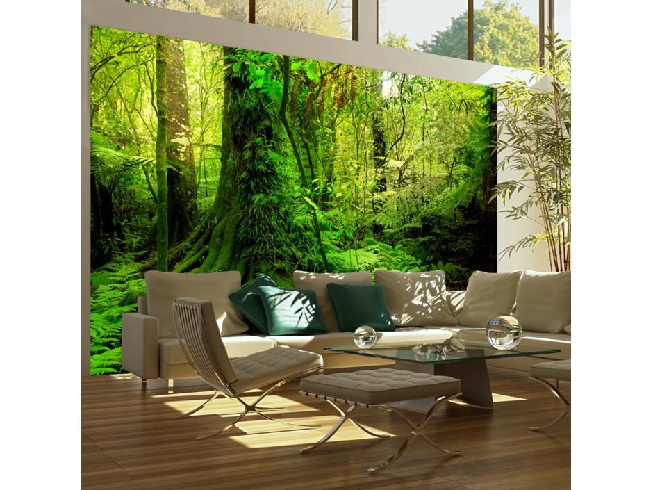 Papier peint - Jungle